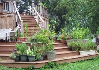 Deck Container Garden
