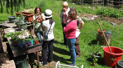 herb workshop