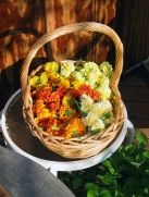 basket of marigolds