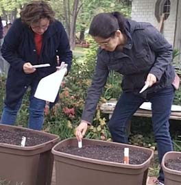 Container Garden Workshop