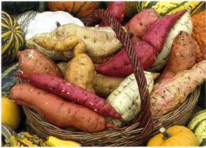 Sweet potatoes of various colors