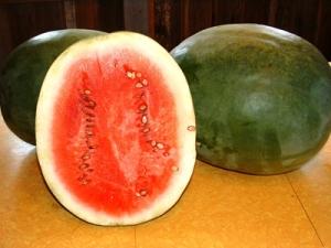 Stone Mountain Watermelon