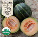 historic-emerald-gem-melon