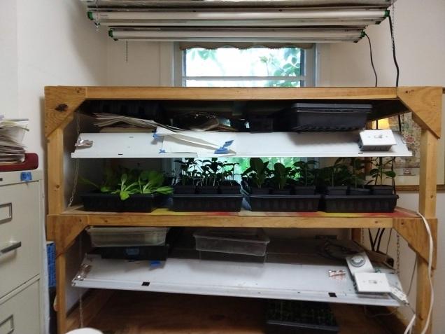 DYI Seed Starting Rack