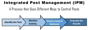 integrated pest management is how to mitigate various pest problems
